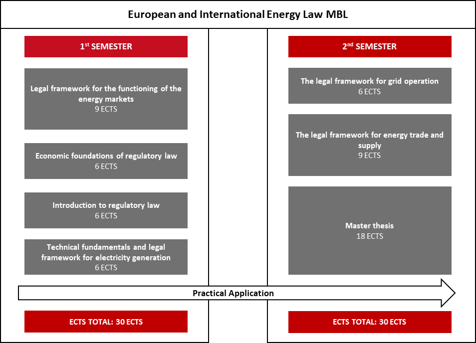 European and International Energy Law MBL